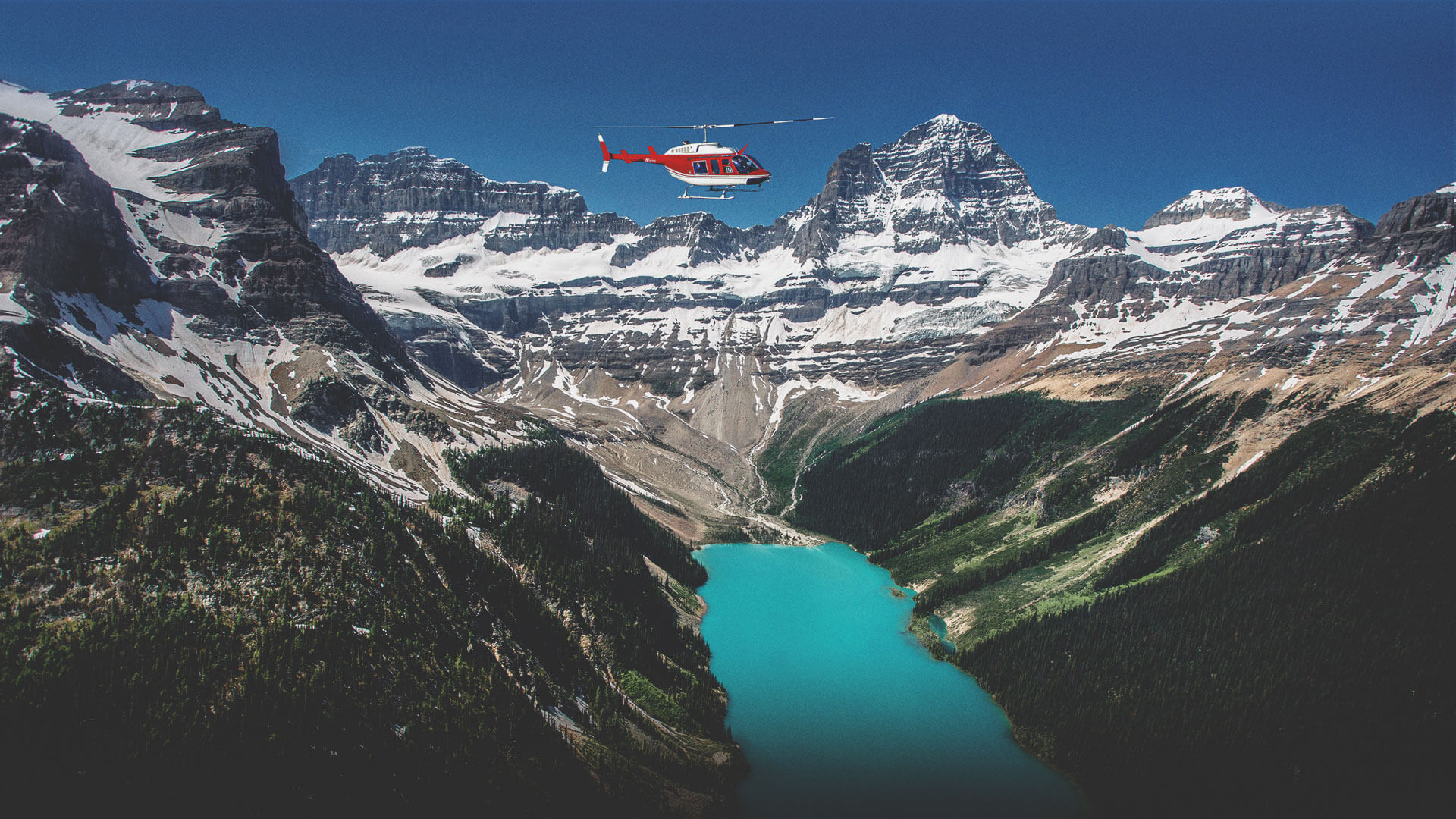 Alpine Helicopters Inc.