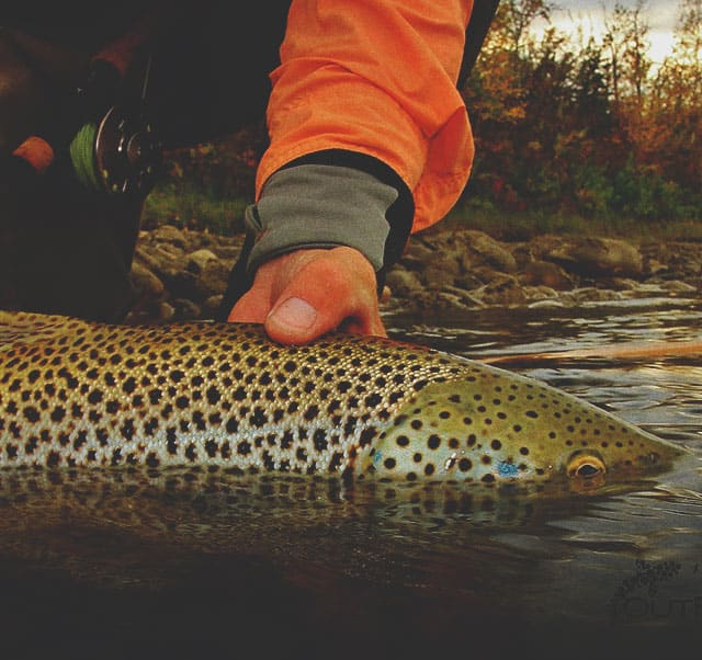Out Fly Fishing Outfitters Fly Shop